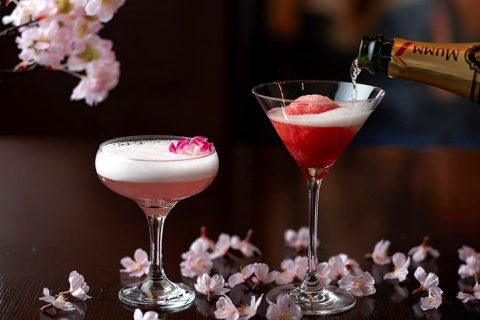 Sakura Cocktails eyecatch